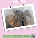 Affiche-concours-hippo-WEB.jpg